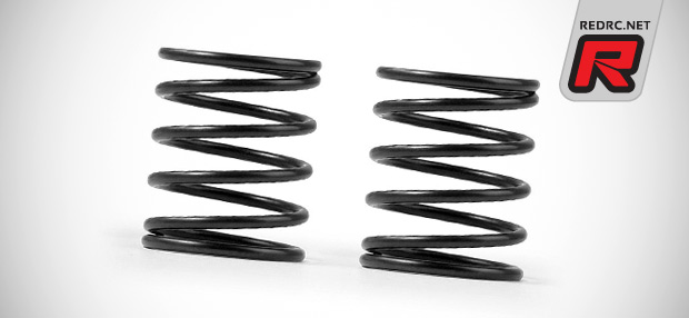 Additional Xray 4S touring car springs