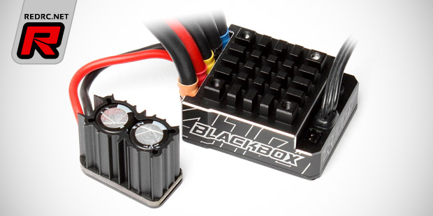 Reedy Blackbox 410R Competition ESC