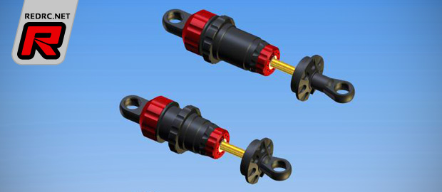 Capricorn 1/8th scale V3 shock absorbers
